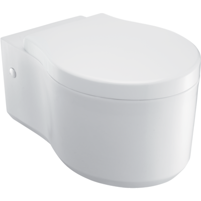 Viragio Wall Hung Toilet with Oval Flush Panel