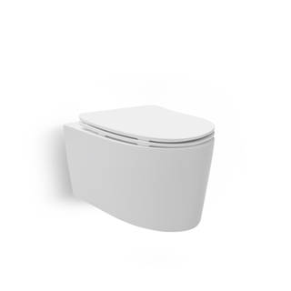 Grande Wall Hung Toilet