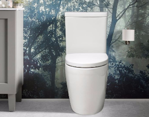 Grande Rimless Back to Wall Toilet